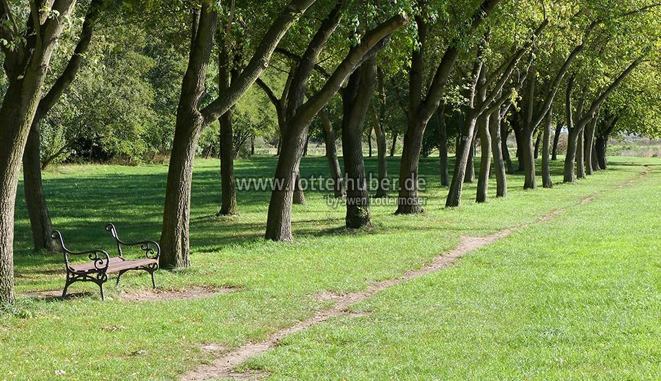 Stadtpark Artern an der Unstrut in Thüringen – fotografiert 2006/2007